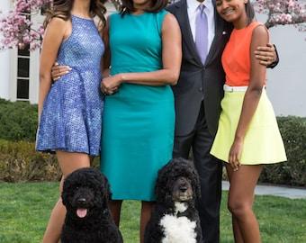 President Obama and Family Photo Print