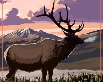 Rocky Mountains, Colorado - Elk and Sunset (Art Prints available in multiple sizes)