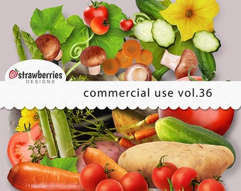 Commercial Use Kit Vol. 36 - Digital Elements