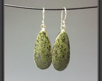 Mexican Jasper earrings