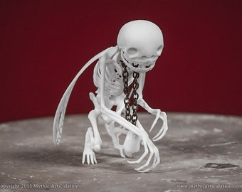 Tooth Fairy Skeleton 3D Print Taxidermy