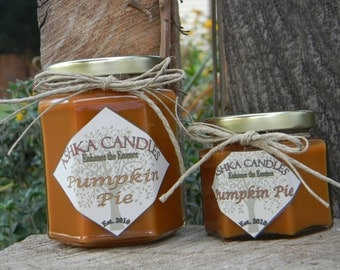 Small PUMPKIN PIE Soy Candle! Fall Candle, Pumpkin Soy Candle, Primitive decor, Cinnamon candle, pumpkin candle, clove candle, pumpkin scent