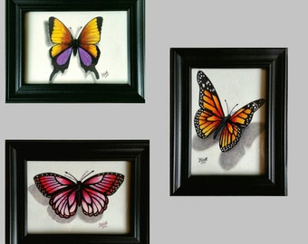 Butterfly Collection framed prints