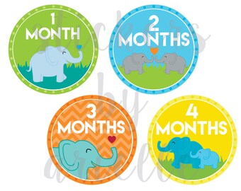 Month by Month Baby Stickers - Elephant