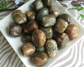 Rainforest Jasper Tumbled Stones