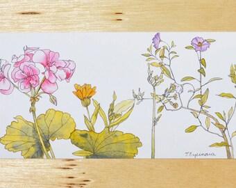 "Prints ("" Winter flowers"")"