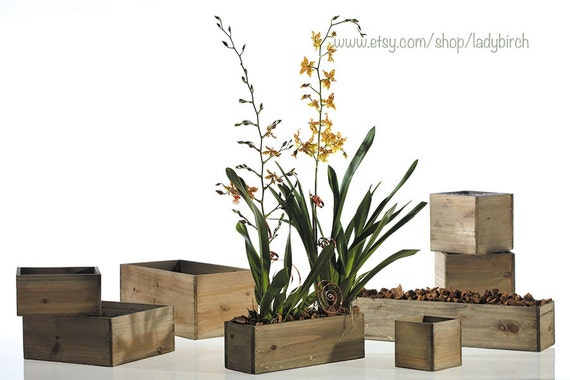 Wood vases wood boxes wooden boxes for centerpieces reception for Wood vases for centerpieces