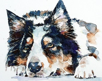 "Border Collie "" Original  Watercolour A3 (30*40cm/16*12 Inches)"
