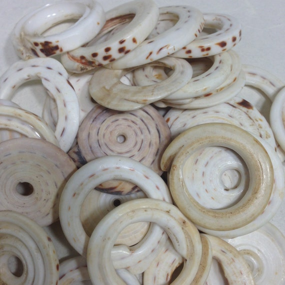 Beads Conus Shells Papua New Guinea Money Old Shells Wealth Bride Traded Shells Statement Jewelry 2 1/2 Inch
