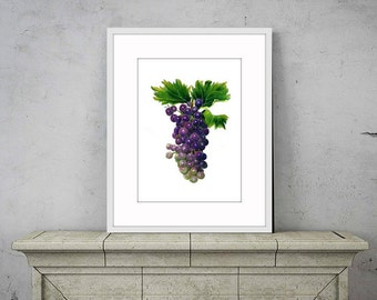 fruit printfruit painting botanical art print purple decor