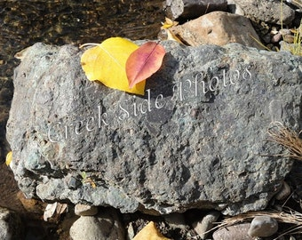 Digital Download, Fall Leaves, Rock, Creek, Sunshine, Nature Photography, Autumn, Wall Art