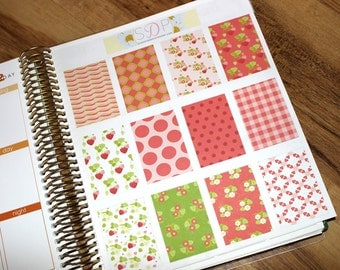 Strawberry Themed full box decorative planner stickers (029)