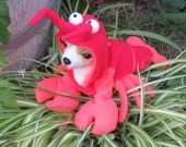 Lobster Costume for Dog XSmall-Medium by Cozy Pawz