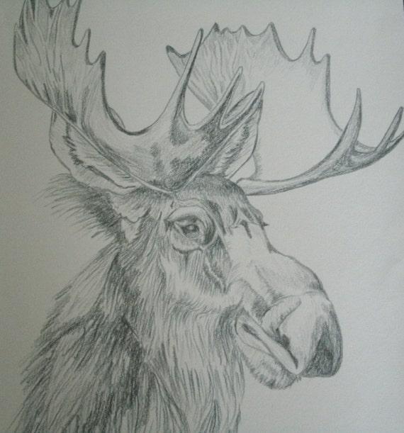 Dessin dorignal original fine art animaux nature
