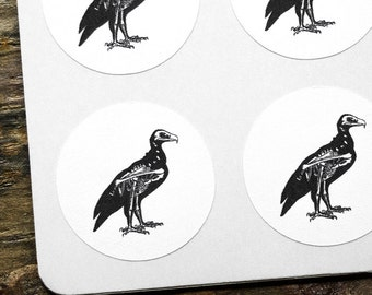 Rustic Bird Stickers, Skull Labels, White Stickers, Envelope Seals, Rustic Labels, Wedding Labels, Anatomy Stickers