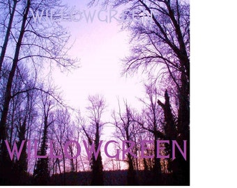 Amethyst Twilight DIGITAL ART Black Branches Skyscape beautiful GOTHIC Evening photo graphics jpeg jpg Printable Poster Art,Instant Download