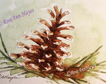 Pine Cone Watercolor Painting Print Nature Garden Still Life Tree