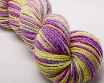 BFL Hand dyed  painted DK  yarn 100g skein knit crochet weave Frolic