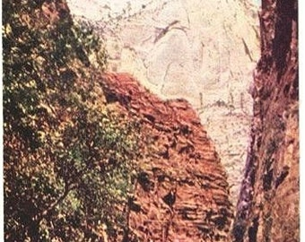 Vintage Utah Postcard - Mountain of Mystery at Zion National Park (Unused)