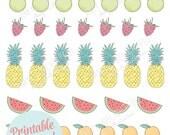 Printable FRUIT stickers! - Digital File Instant Download- Happy planner stickers,pineapple, watermelon, lemons, strawberries, Erin Condren