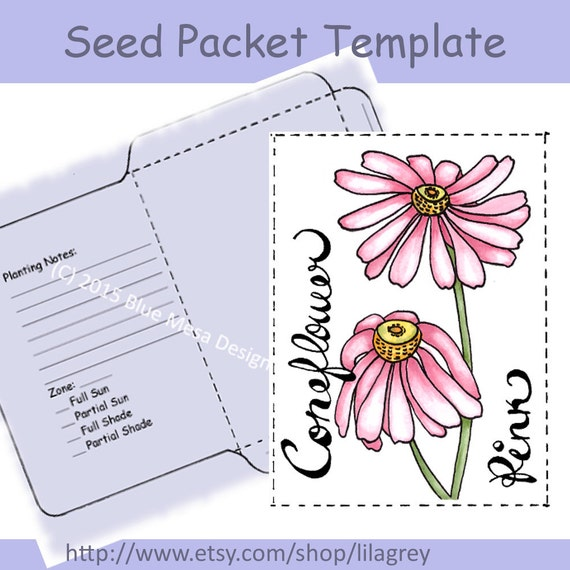 seed packet template pink coneflower hand lettering. Black Bedroom Furniture Sets. Home Design Ideas