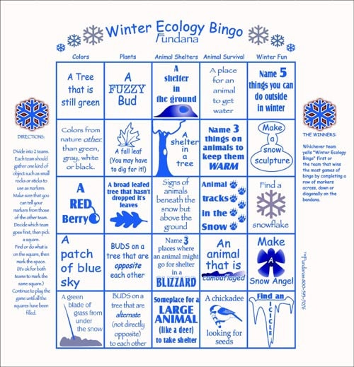 winter fun play our winter ecology bingo scavenger hunt game fun activity for vacation no. Black Bedroom Furniture Sets. Home Design Ideas