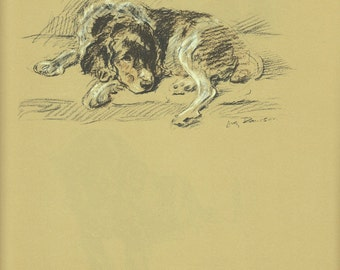 Antique Dog Print, Spaniel Hound Mutt Dog Lucy Dawson, Wall Decor, Animal PRint, Art Illustration to Frame, plate,  brown black, terrier B-1