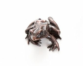 European common frog - Bronze (large)