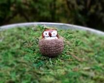 Miniature Owl in a Nest Fairy Garden Accessory - Miniature Fairy Garden Bird - Brown Owl