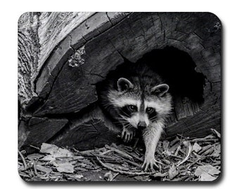 Raccoon photography Mouse Pad