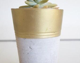Cement Accent Planter
