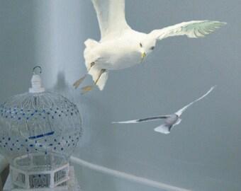 Wall Decals Flying Seagulls, Bird Sticker Seagulls, Animals Nature, Coast Ocean Beach, Watercolor Fabric Wall Sticker (Not Vinyl), Two Birds