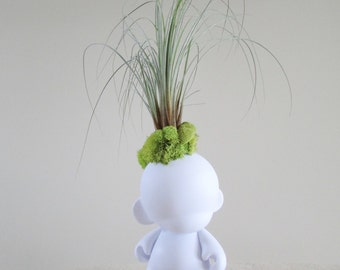 Kidrobot Munny from Munny World with Mounted Air Plant