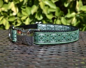 Green and Silver Dog Collar with Black Nylon Webbing (Adjustable; Metal Buckle)