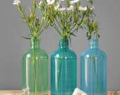 Seaside Decor Colored Glass Bottles, Set of Three, Hand Painted Apothecary Glass Vases and Table Decor