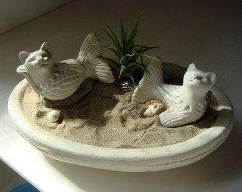 SALE! Cat Mermaid Mercat Sunbathing Cat Fish with Air Plant Concrete Bowl Terrarium