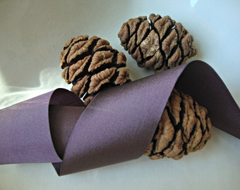Iridescent Brown Taffeta Ribbon