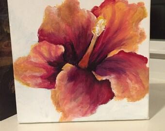 Lovely flower