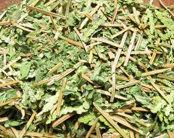 Tisane Des Bois Bio 10g, vitamine C, minéralisante, plantes du Québec/Of the Wood herbal tea 10g, vitamin C, mineralizing, herbs of Quebec