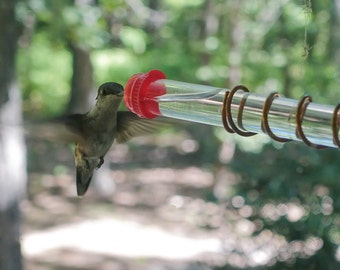 Test Tube Window Hummingbird Feeder With Suction Cup