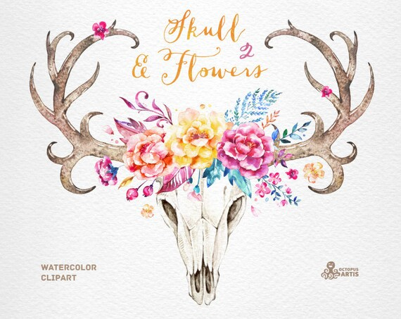Skull & Flowers 2. Watercolor skulls with antlers and flowers