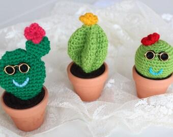 Crochet Cactus, Amigurumi Plant, Potted plant, Decorative plant,  Cute gift
