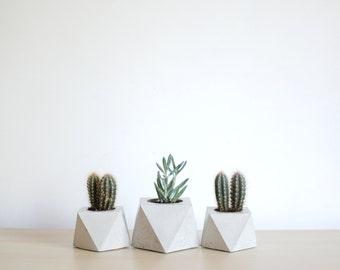 FORMA | Concrete Succulent Planter - set of 3