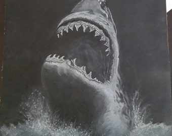 White charcoal shark