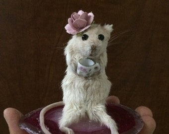 Taxidermy Mouse