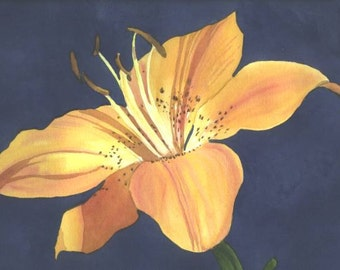 Original Watercolor painting Peach Lily