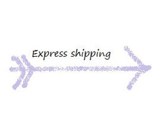 Express Shipping for Domestic