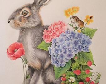 Framed mini prints: deer and hare illustration