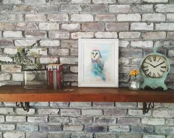 Owl Print (11x14 paper)