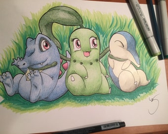 Pokemon Totodile Chikorita Cyndaquil starters